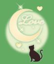 moonlight-cat看板