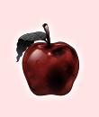 赤林檎の断罪